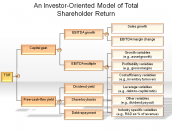 An Investor-Oriented Model of Total Shareholder Return
