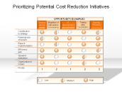 Prioritizing Potential Cost Reduction Initiatives
