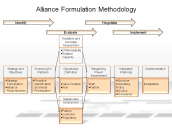 Alliance Formulation Methodology