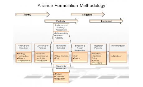 Alliance Formulation Methodology
