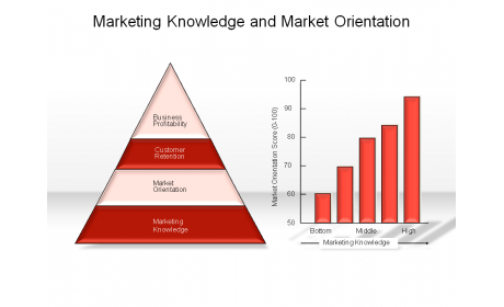 Marketing Knowledge and Market Orientation