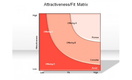 Attractiveness/Fit Matrix