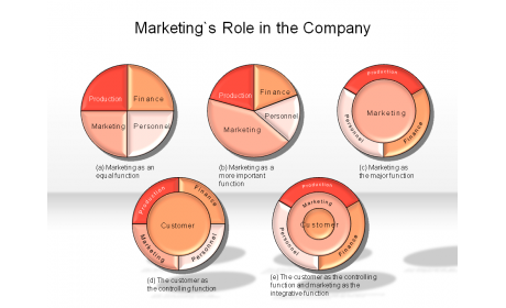 Marketing's Role in the Company