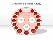 Companies in a Mature Industry