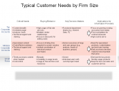 Typical Customer Needs by Firm Size