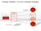 Strategic Flexibility: Core and Contingent Strategies