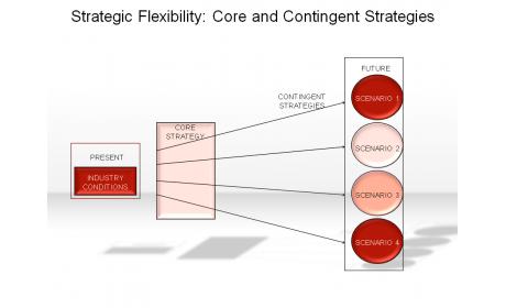 Strategic Flexibility: Core and Contingent Strategies
