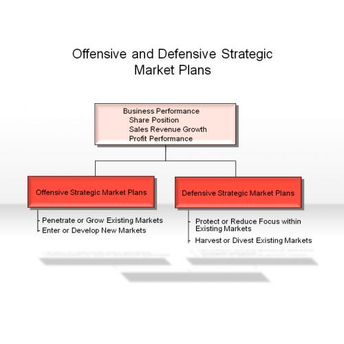 Different Defensive Strategies in Strategic Management