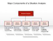 Major Components of a Situation Analysis