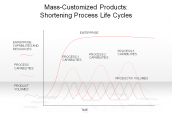 Mass-Customized Products: Shortening Process Life Cycles