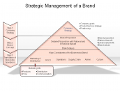 Strategic Management of a Brand