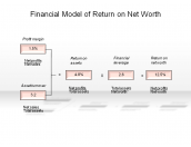 Financial Model of Return on Net Worth