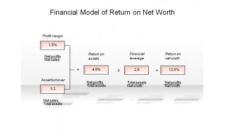 Financial Model of Return on Net Worth