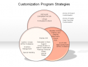 Customization Program Strategies