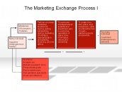 The Marketing Exchange Process I