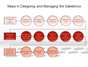 Steps in Designing and Managing the Salesforce