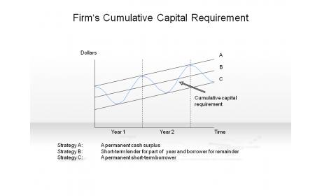 Firm's Cumulative Capital Requirement