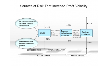 Sources of Risk that Increase Profit Volatility
