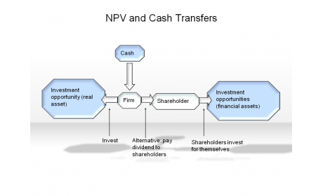 NPV and Cash Transfer