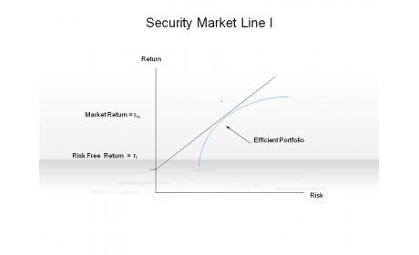 Security Market Line I