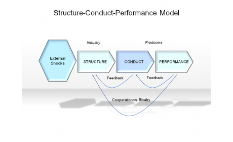 Structure-Conduct-Performance Model