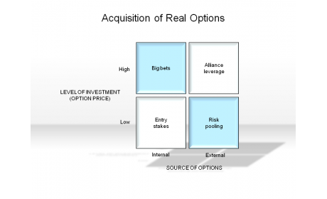 Acquisition of Real Options