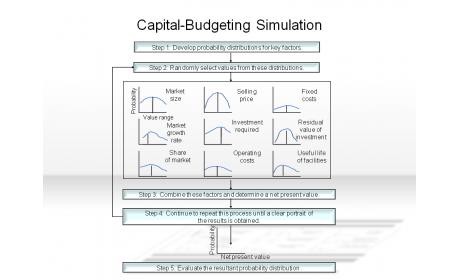 Capital-Budgeting Simulation