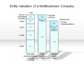Entity Valuation of a Multibusiness Company
