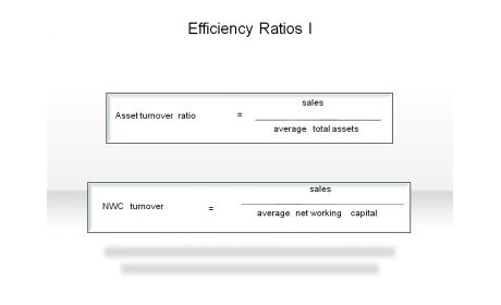 Efficiency Ratios I