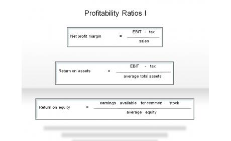 Profitability Ratios I