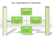 Key Organizational Components