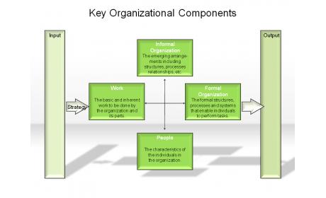 Key Organizational Components