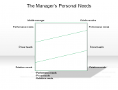 The Manager's Personal Needs