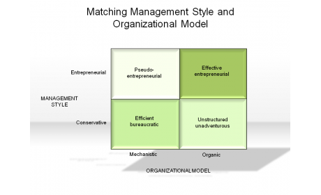 Matching Management Style and Organizational Model