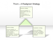 Thorn - A Realigned Strategy