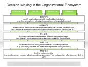 Decision Making in the Organizational Ecosystem