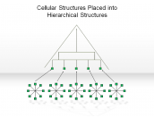 Cellular Structures Placed into Hierarchical Structures