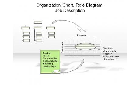 Organization Chart, Role Diagramm, Job Description