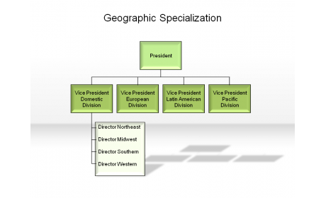 Geographic Specialization