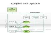 Examples of Matrix Organization