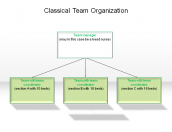 Classical Team Organization