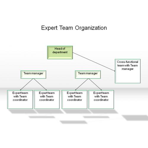 team organization strategy