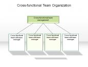 Cross-functional Team Organization