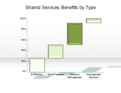 Shared Services Benefits by Type