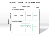 Potential Division Management Roles