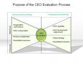 Purpose of the CEO Evaluation Process