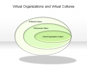 Virtual Organizations and Virtual Cultures