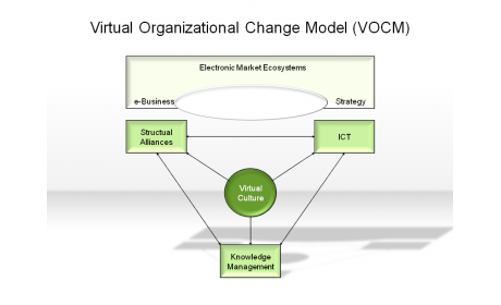 Virtual Organizations Change Model (VOCM)