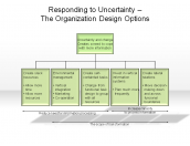 Responding to Uncertainty - The Organization Design Options