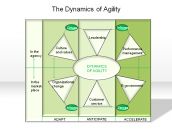 The Dynamics of Agility